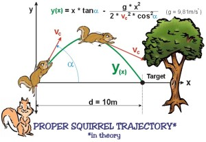 squirrel theory